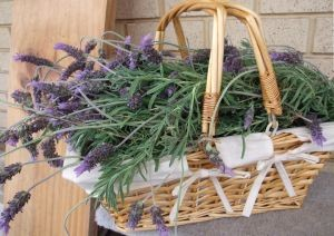 A wicker basket filled with lavender