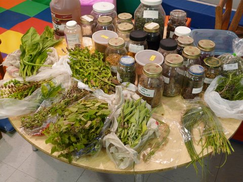 Fresh herbs and dried herbs in bottles on the table.
